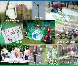 Eco Schools collage