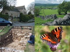 Multiple images of a church, a stone wall in a field, an archaeological digging site and an orange butterfly resting upon a pink flower
